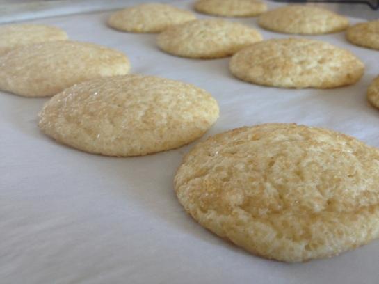 Olas & Chanclas | Lemon Sugar Cookies